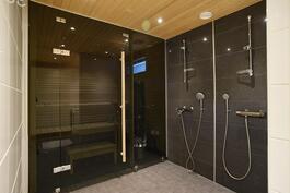 Pesuhuone/sauna.