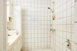 Oikean puoleisen huoneiston wc ja suihkutila