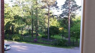 näkymät puistoon kesällä