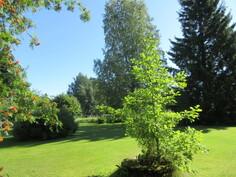 Lisäkuvaa puistomaisesta pihapiiristä ja kiinteistöllä on kunnallistekniikka!