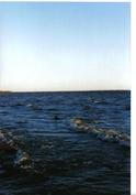 Meren rantaan 200m - uiminen, kalastus, retkeily, veneily