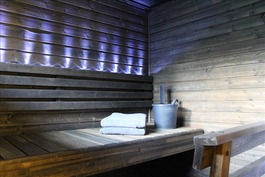 Erillisen yksiön sauna.