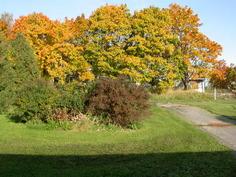 Näkymä pääovelta syksyllä