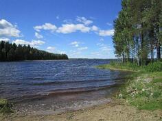 Järven rantaa ja puhdas, kalaisa Pielavesijärvi