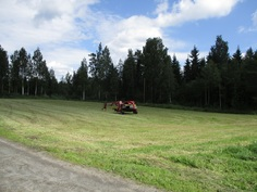 Itäisempi pelto