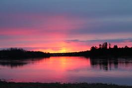 Maisema kotipihasta ilta-auringon aikaan