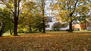 Talojen ympärillä on lähes hehtaarin kokoinen puistoalue lukuisine puulajeineen...