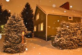 Talvella lumi pukee puistomaisen tienoon postikorttimaisemaksi.