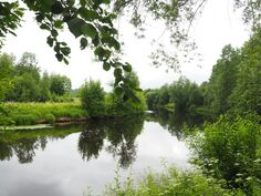 Murennusjoki