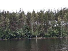 Tontit 1-2 järveltä katsottuna