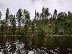 Tontti 3 järveltä kuvattuna