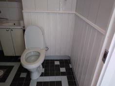 Wc ja kylpyhuone, maalattu paneeli