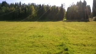 0,85 ha peltolohko joen ja metsän välissä