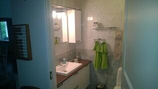 Erillinen wc ja suihku