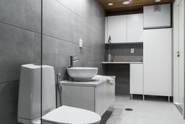 Kodinhoitohuonetilat kylpyhuoneessa. Asukasvalinnoin.