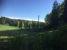 Peltomaisemassa metsän sylissä
