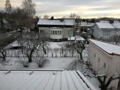 Sama talvella, Tuomiokirkon torni pilkottaa koivun oksien takana taustalla.