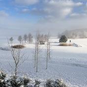 Maisema6 - talvipäivä