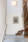 Yläkerran portaissa on korkeutta