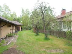 Eteläinen piha kaksi omenapuuta ja vihannes puutarha