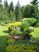 Kesäistä puutarhaa.