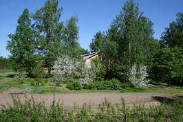 Kasvimaa, marjapensaat ja omenapuut
