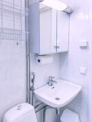 Yksiön wc/pesutilat.