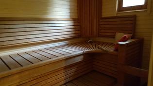 Sauna. Lauteiden alla kaiuttimet.