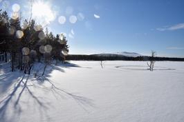 Ullajärven tontin rantaa