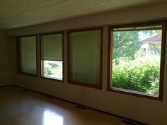 Isot ikkunat pihalle. Sälekaihtimet.