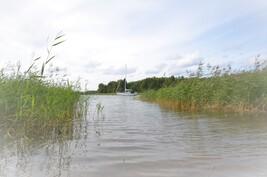Virkistysalueen uimarantaa käyttöoikeus
