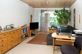 Pienemmän asunnon olohuone