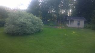 Puutarhaa ja leikkimökki