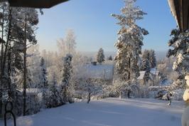 Talvi kuvia pihasta